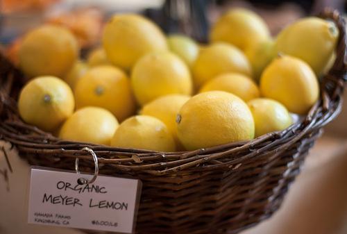 メイヤーレモンの栄養と味について。普通のレモンとどう違う?