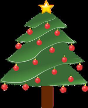 クリスマスポインセチア