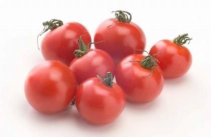 プチトマトのプランターでの育て方。支柱やわき芽のポイントとは