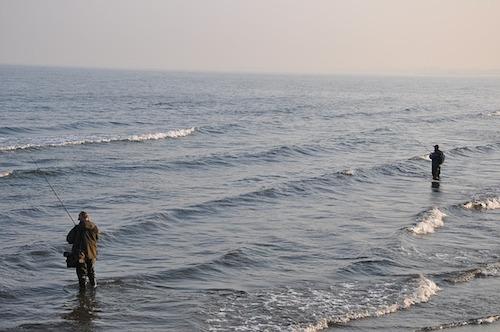 メタルジグの使い方。シーバス,ヒラメ,アジ,青物の釣り方解説