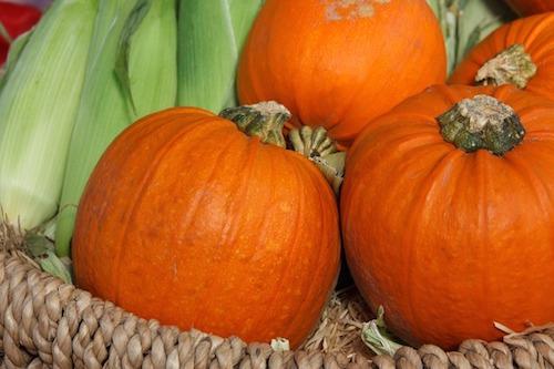コリンキーの美味しい食べ方とは。栄養と旬について。育てられる?