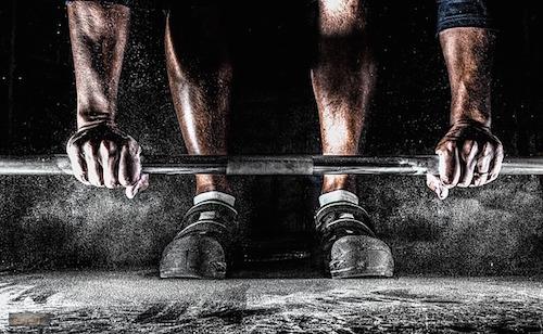 グルタミンと筋肉