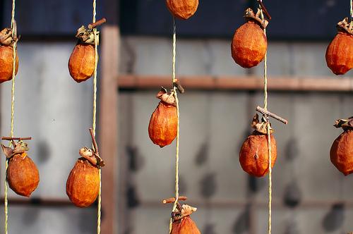 干し柿にカビが生えたらどーする?白い粉の見分け方と防止の方法