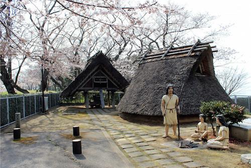 縄文時代と弥生時代の違いは?住居と土器でどう違う?