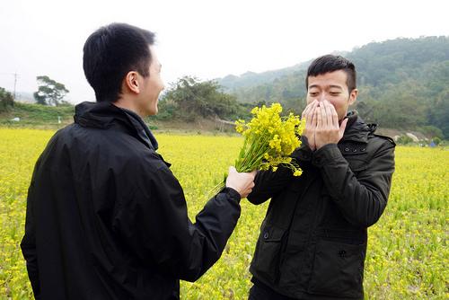 花粉症対策メガネの効果いかほど?zoff、jinsはオシャレだけど口コミは?